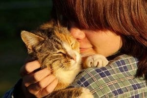 Die Kosten gibt die Katze in Form von Liebe und Zärtlichkeit dem Menschen zurück