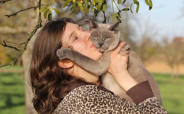 Das beste Beruhigungsmittel für Katzen ist der vertraute Mensch