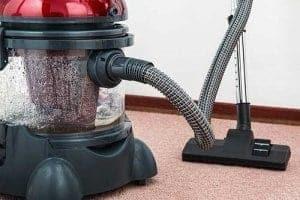 Katzenhaare entfernen mit dem Teppichreiniger